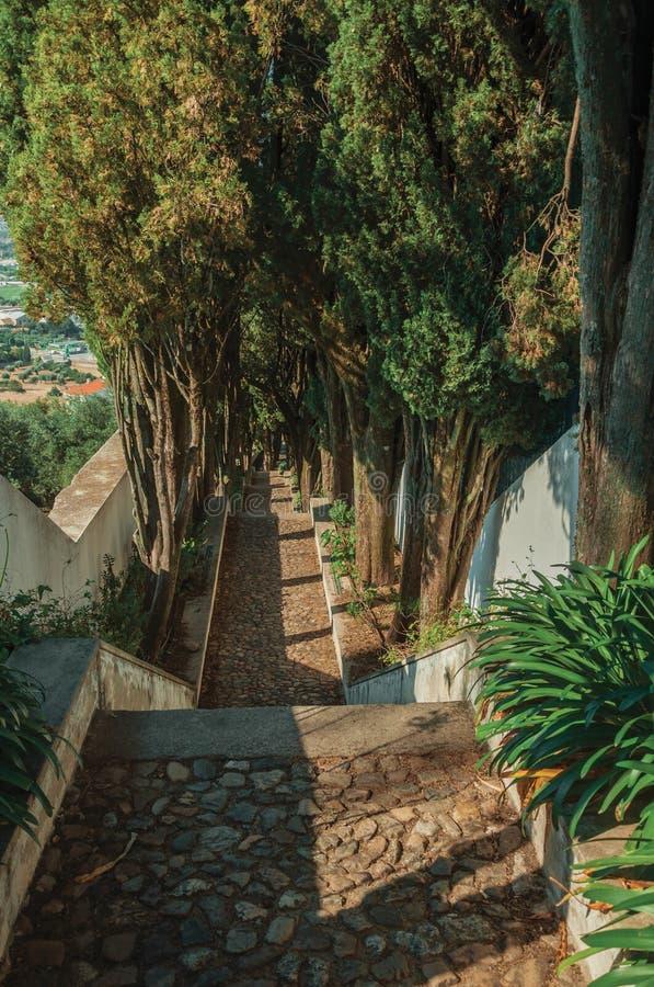 Caminho da pedra com as etapas que vão abaixo do monte fotografia de stock royalty free