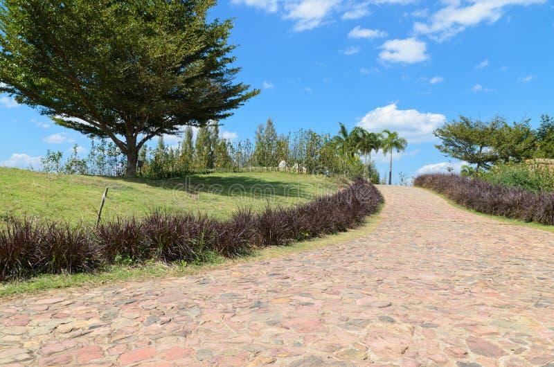 Download Caminho de pedra no jardim foto de stock. Imagem de país - 29829084