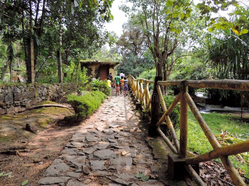 Caminho para Vazhachal Falls, Thrissur, Kerala fotografia de stock