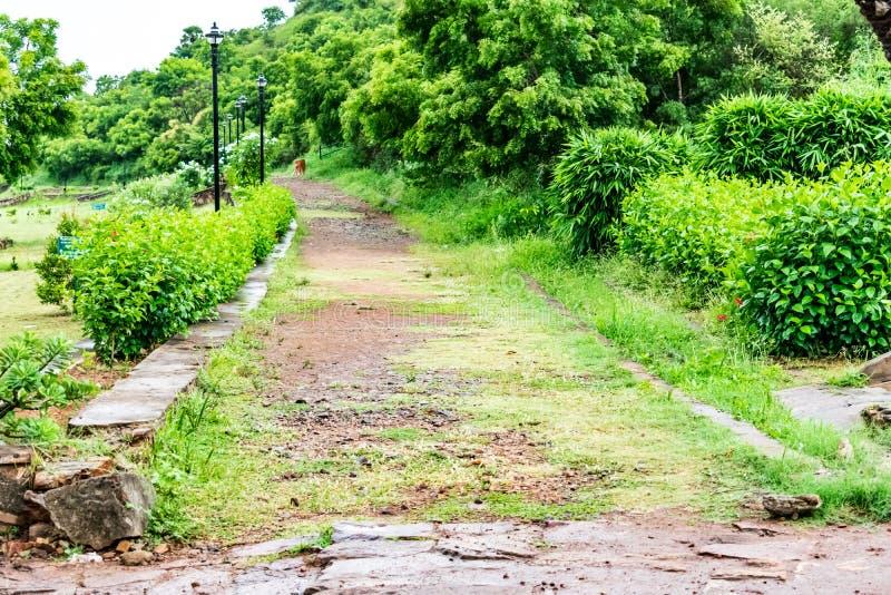 Caminho rural indiano do jardim com os arbustos verdes que olham impressionantes imagens de stock