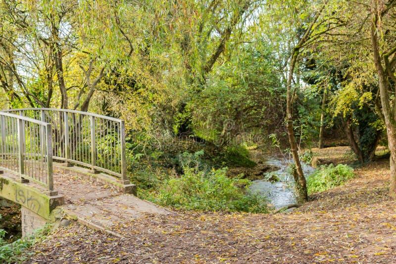 Caminho uma ponte da caminhada em uma estadia local do outono do parque imagens de stock royalty free