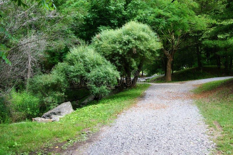 Caminhos no parque fotografia de stock royalty free