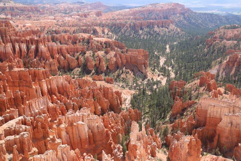Camini leggiadramente rossastri arancio Bryce Canyon fotografia stock libera da diritti