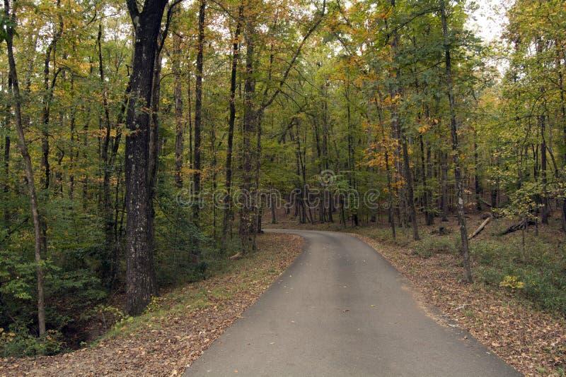 Camino al otoño imagen de archivo libre de regalías