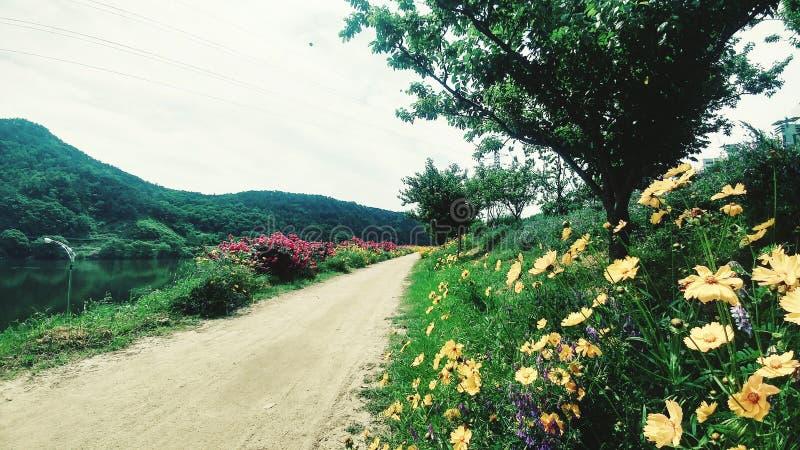 Camino al paraíso foto de archivo libre de regalías