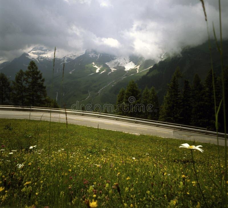 Camino alpestre en Austria fotos de archivo
