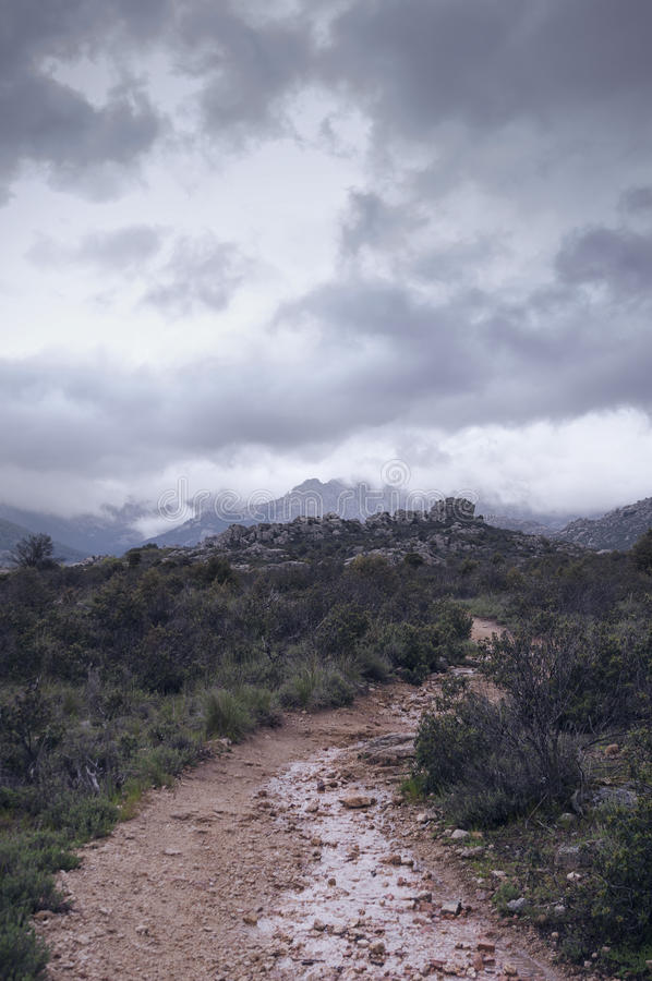 Camino anegado a la montaña - vertical fotos de archivo libres de regalías