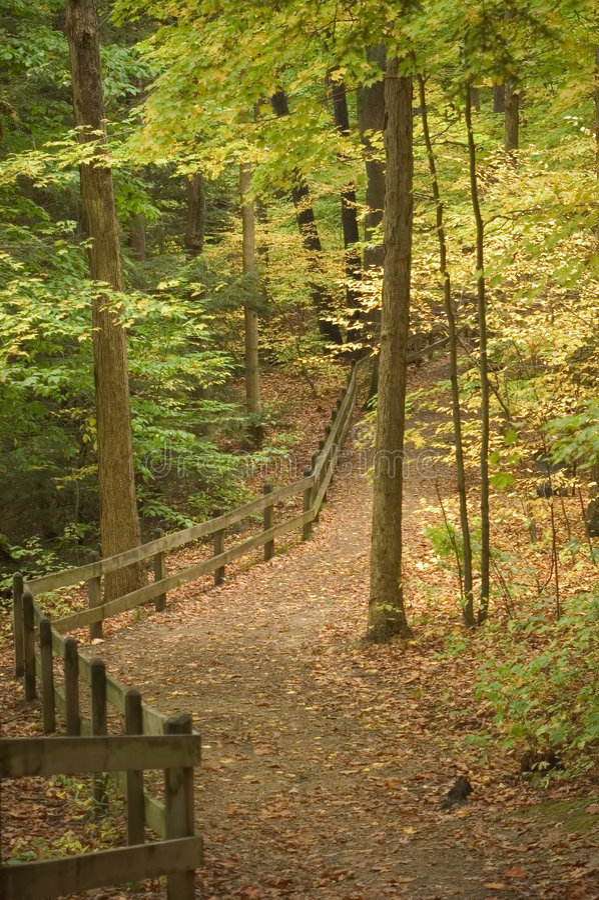 Camino con la cerca foto de archivo libre de regalías