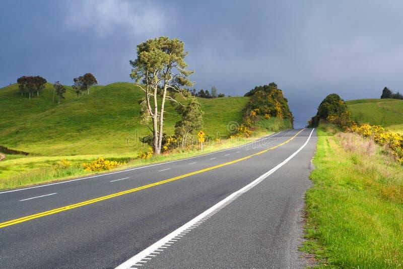 Camino con la línea amarilla doble pintada, Nueva Zelandia fotos de archivo libres de regalías