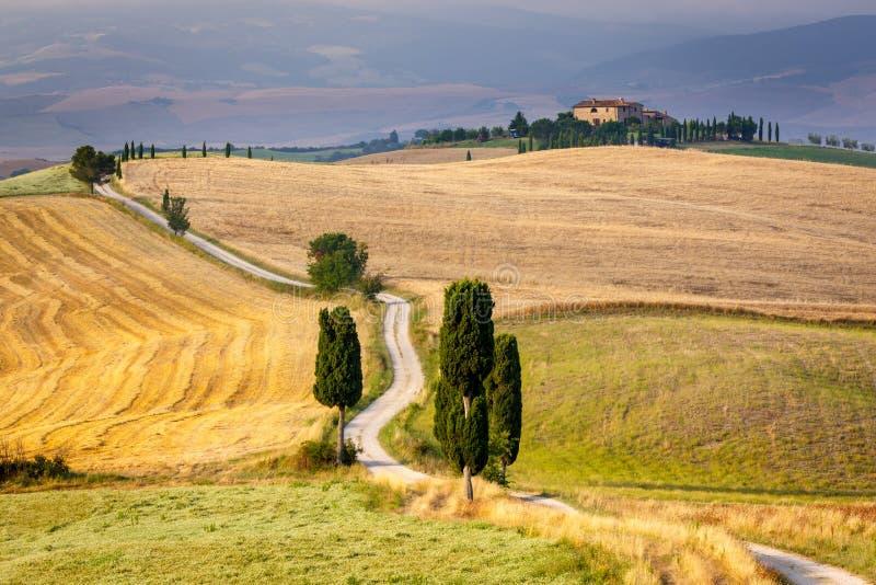 Camino con los cipreses en Toscana imagenes de archivo