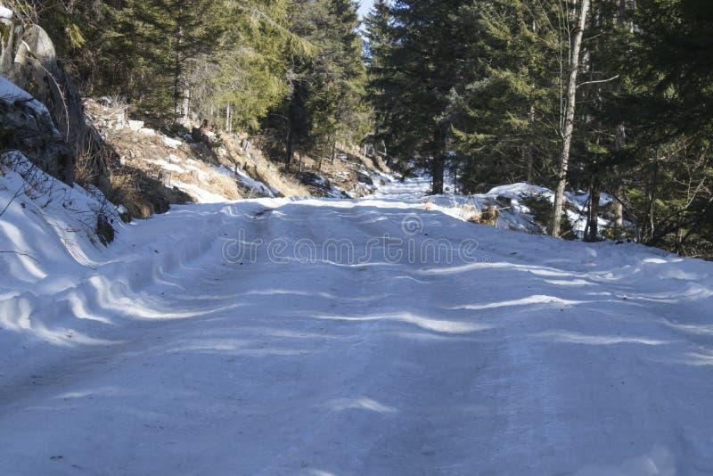 Camino congelado de la montaña peligrosa durante invierno foto de archivo