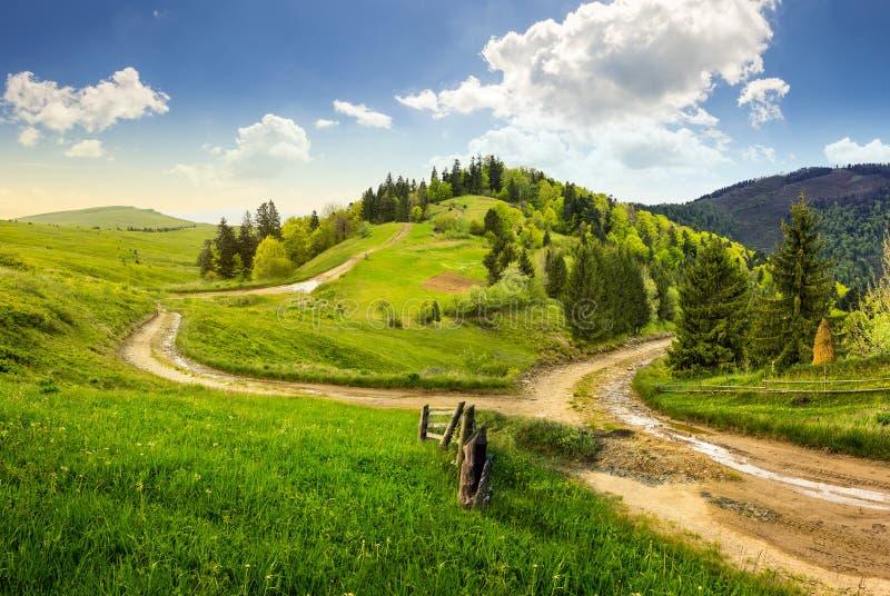 Camino cruzado en prado de la ladera en montaña fotos de archivo libres de regalías