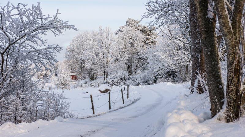 Camino cubierto con grava en la bobina del invierno en el landscap rural del invierno imagen de archivo libre de regalías