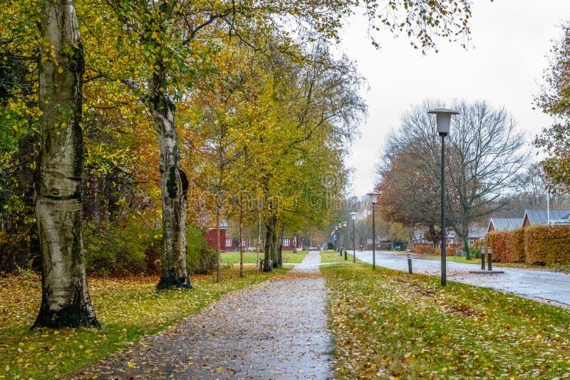 Camino de Autumn Danish en noviembre en Viborg, Dinamarca imágenes de archivo libres de regalías