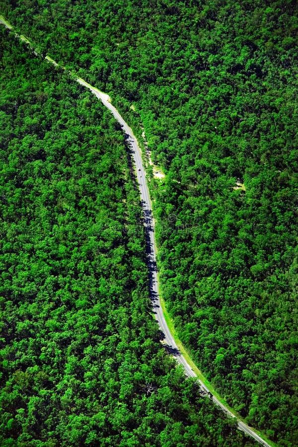 Camino de Bush foto de archivo libre de regalías