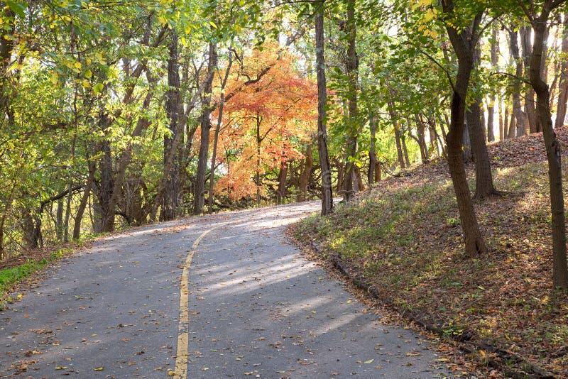 Camino de Cournty del otoño foto de archivo