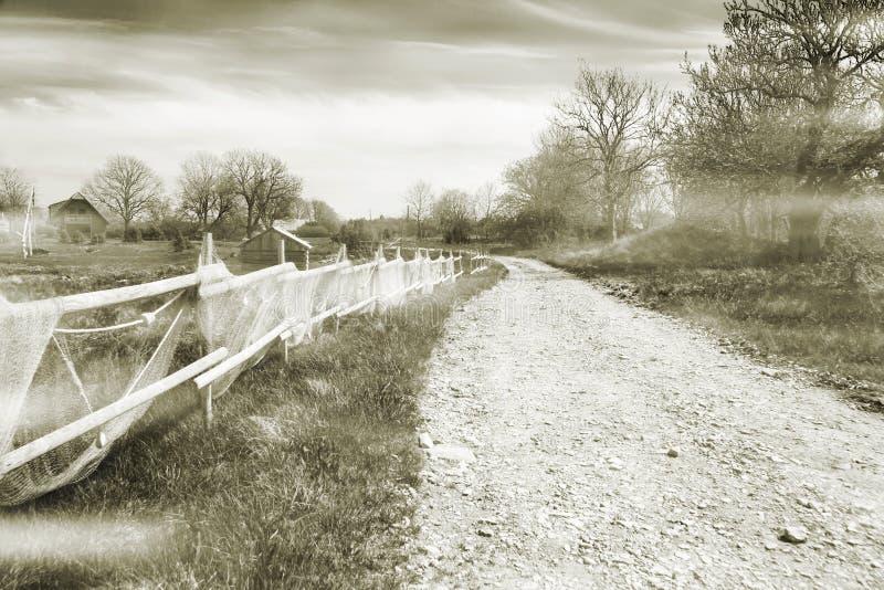 Camino de la aldea en una niebla imágenes de archivo libres de regalías
