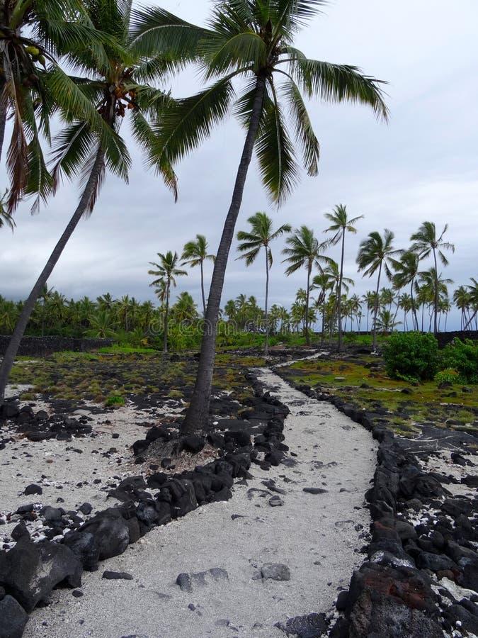 Camino de la arena en parque nacional del uhonua o Honaunau de la PU ' foto de archivo libre de regalías