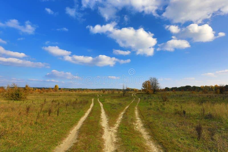 Camino de la bifurcación foto de archivo