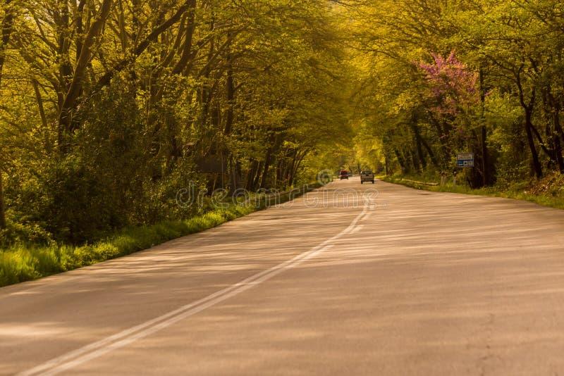 Camino de la calle en estación de primavera en Louros Ioannina Grecia imágenes de archivo libres de regalías
