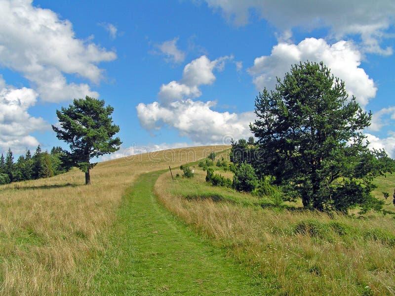 Camino de la montaña imagen de archivo