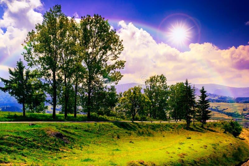 Camino de la montaña cerca del bosque conífero con el cielo nublado de la mañana foto de archivo libre de regalías