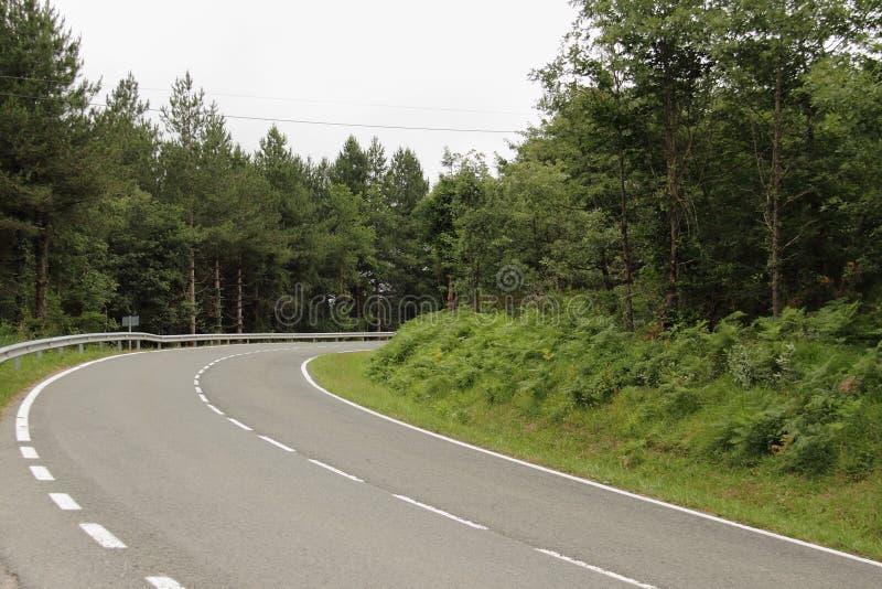 Camino de la montaña con los árboles en España imagen de archivo