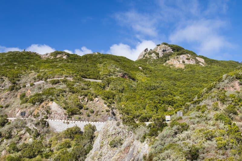Camino de la montaña de Tenerife, España imagen de archivo libre de regalías