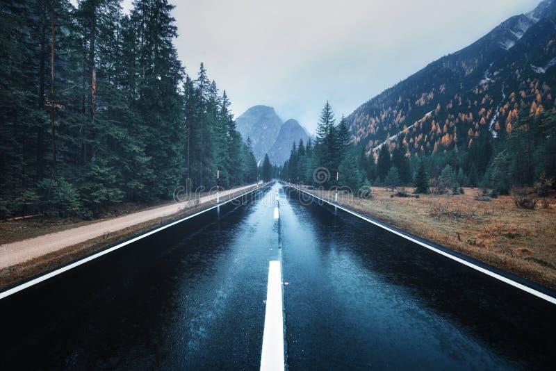 Camino de la montaña del asfalto en bosque de niebla en día lluvioso cubierto imagenes de archivo