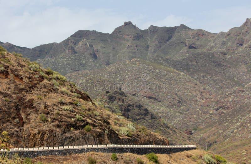 Camino de la montaña en Tenerife (islas Canarias) imágenes de archivo libres de regalías