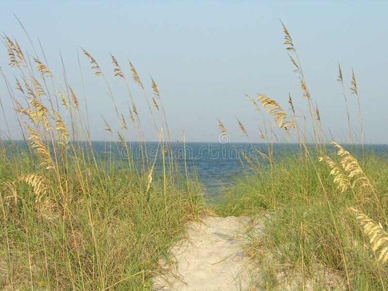 Camino de la playa fotos de archivo