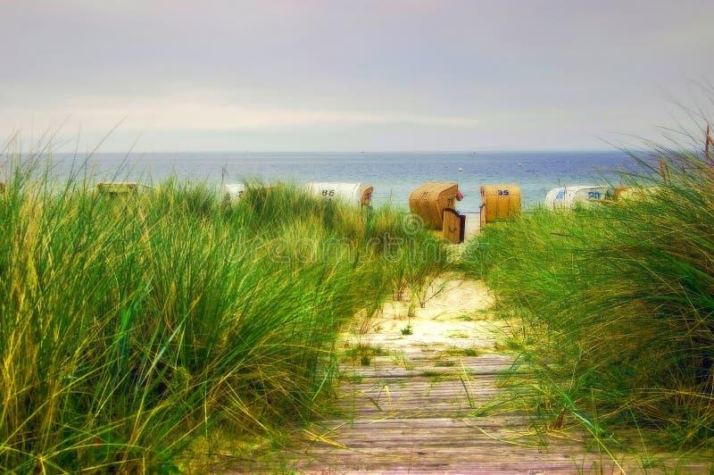 Camino de la playa al mar Báltico imagen de archivo libre de regalías