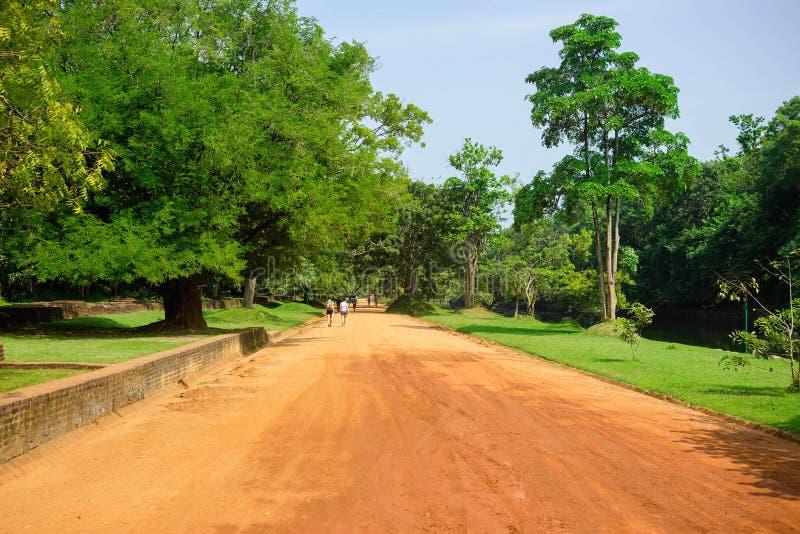 Camino de la rodera en parque cerca de Sigiriya Lion Castle, Sri Lanka imágenes de archivo libres de regalías