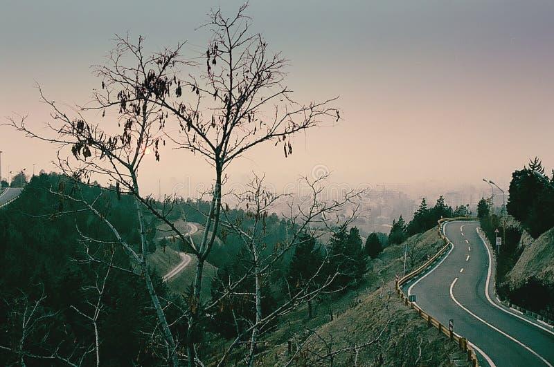 Camino de la selva por la tarde en Teherán imagen de archivo
