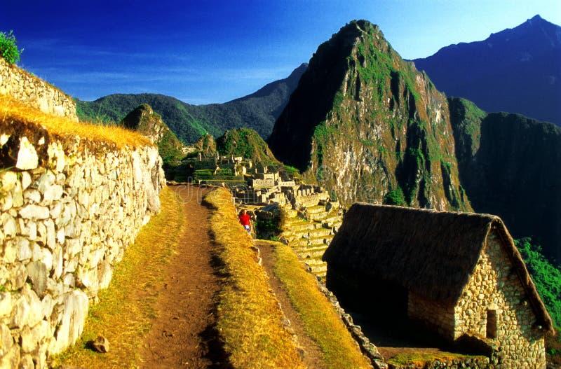 Camino de la terraza de Machu Pichu imagenes de archivo