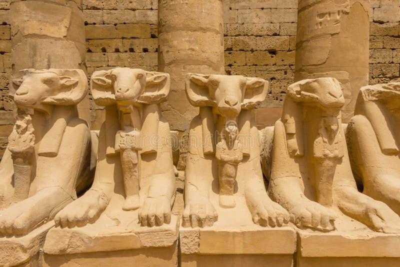 Camino de las esfinges en el complejo del templo de Karnak en Luxor, Egipto fotos de archivo