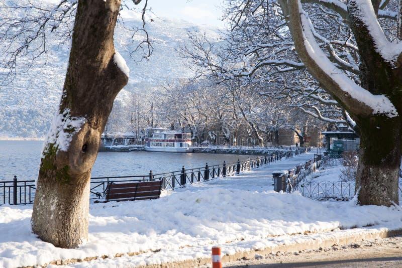 camino de los árboles de la estación del invierno del hielo de la nieve en la ciudad Grecia de Ioannina fotografía de archivo