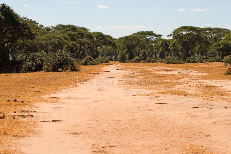 Camino de los cazadores al lado del parque nacional de Hwange imagenes de archivo