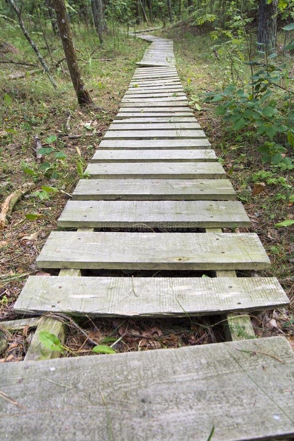 Camino de madera foto de archivo libre de regalías
