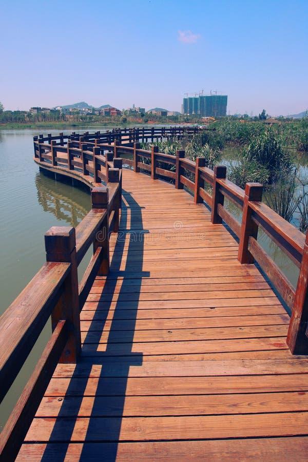 Camino de madera en el agua foto de archivo libre de regalías