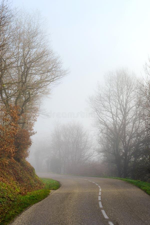 Camino de niebla del peligro en el bosque fotos de archivo libres de regalías