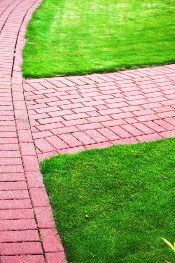 Camino de piedra del jardín con la hierba, acera del ladrillo fotografía de archivo