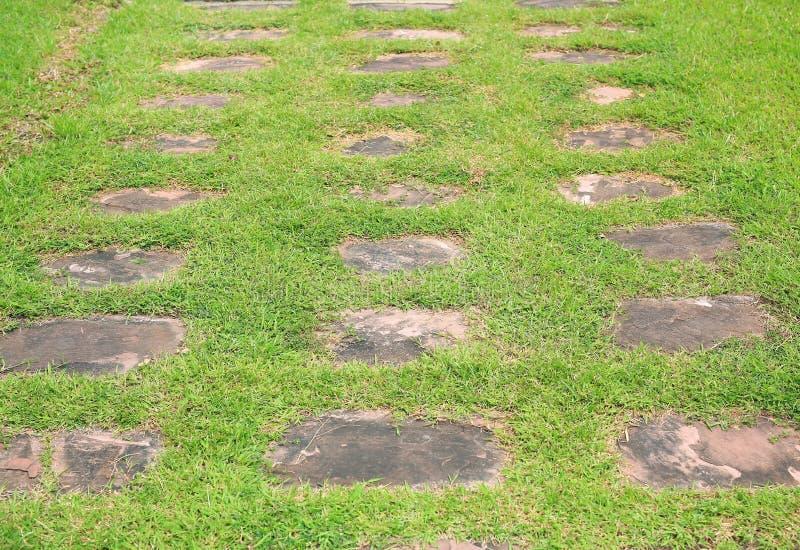 Camino de piedra en el parque con el fondo de la hierba verde fotografía de archivo