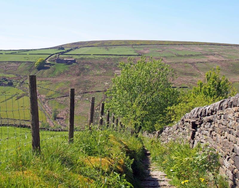 Camino de piedra estrecho y pared de piedra y cerca que llevan cuesta abajo en un valle cubierto en prados y paramera fotos de archivo libres de regalías