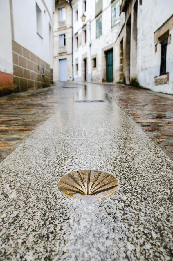 Camino de Santiago de Compostela. Golden yellow scallop shell on a wet street floor. Most famous pilgrimage route in Europe. Vertical caption stock photography