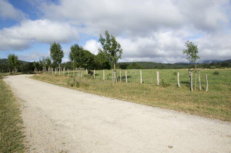 Download Camino De Santiago Från Roncesvalles Till Zubiri Arkivfoto - Bild av spår, gräs: 76700078