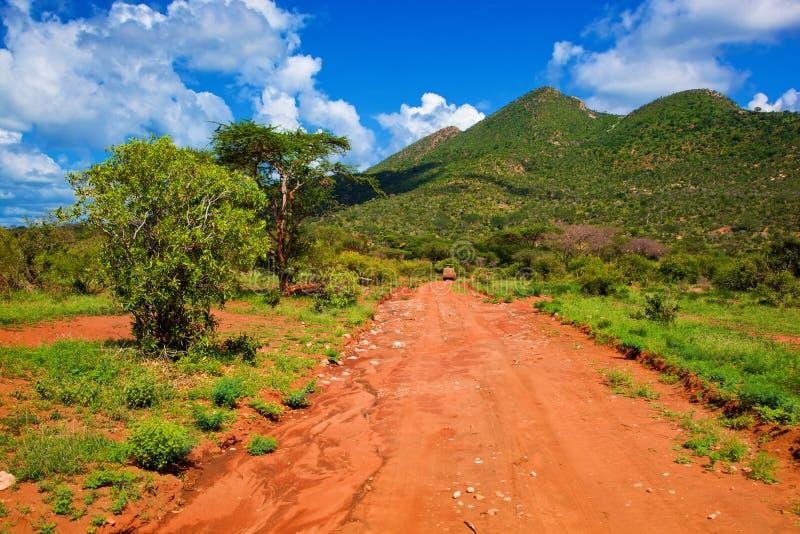 Camino de tierra rojo, arbusto con la sabana. Tsavo del oeste, Kenia, África foto de archivo
