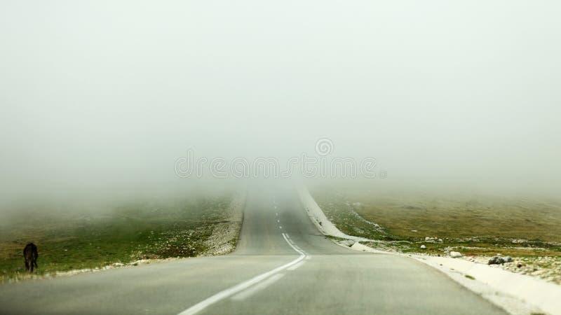 Camino debajo de la niebla imagenes de archivo