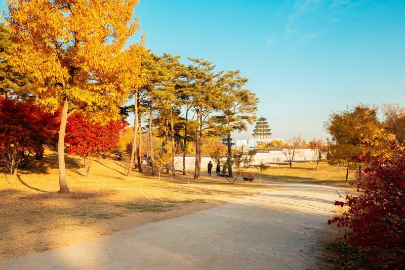 Camino del árbol de arce del otoño en el palacio de Gyeongbokgung en Corea foto de archivo