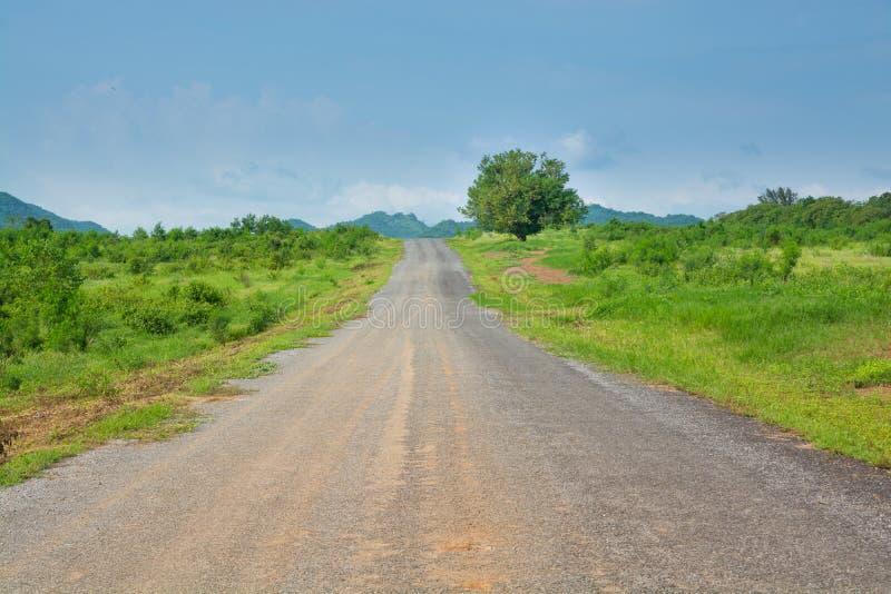 Camino del campo del abandono en la colina fotografía de archivo